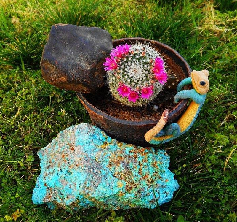Golden Rule Meteorite Found by Twink Monrad