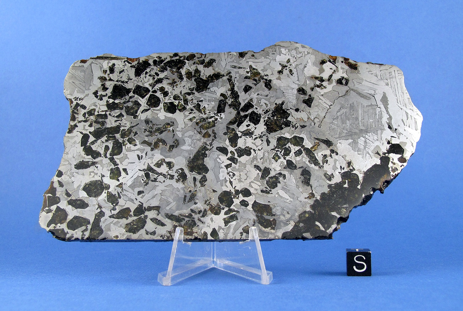 Seymchan Meteorite – 355.9 Gram Transitional Part-Slice