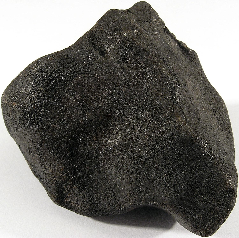 Bassikounou H5 Meteorite